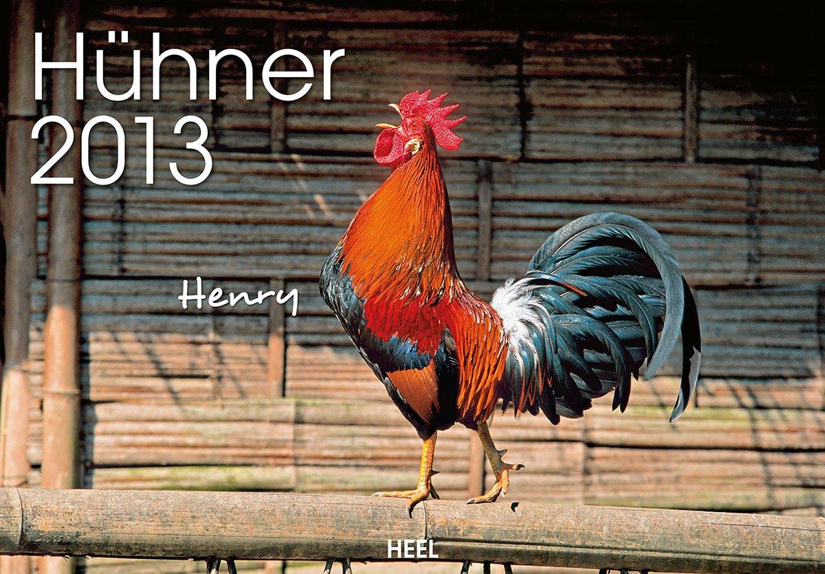 Hühner 2013