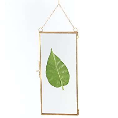 NCYP 4x9 inchs Clear Glass Picture Frame Wall Hanging Certificate Photo Plant Specimen Clip Brass Modern Home Geometric Vertical Decor Card Holder Display Gift