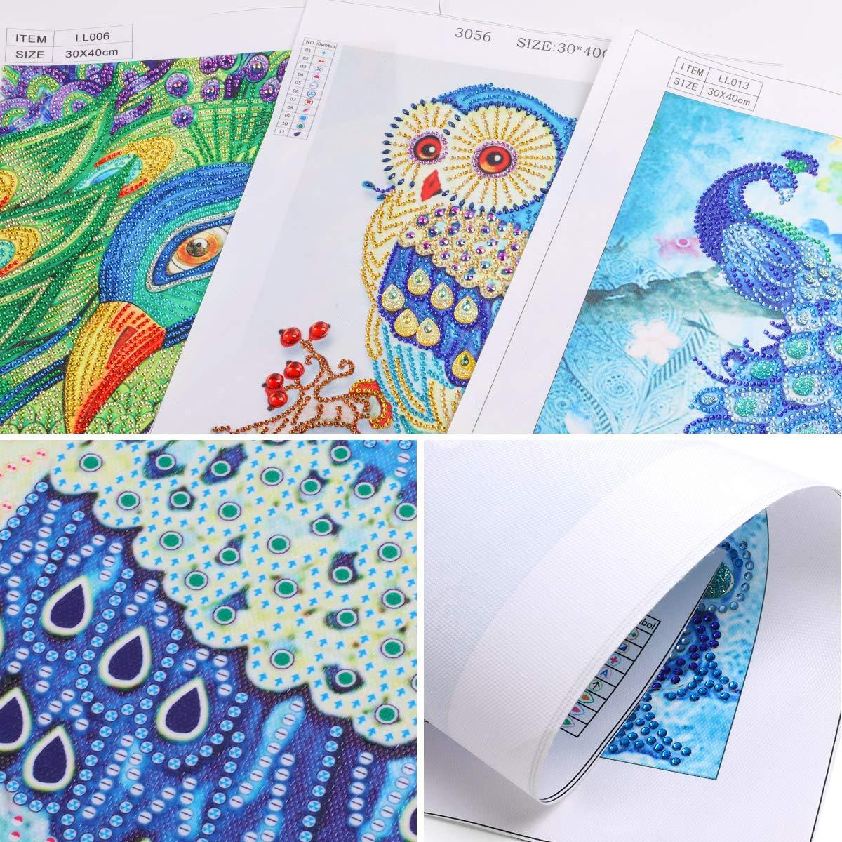 MXJSUA DIY 5D Diamond Painting Kit de Taladro Redondo Completo Rhinestone Picture Art Craft para la decoraci/ón de la Pared del hogar 30x40 cm Dinosaurio Junto al Lago