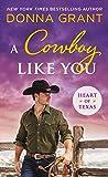 Cowboy Like You