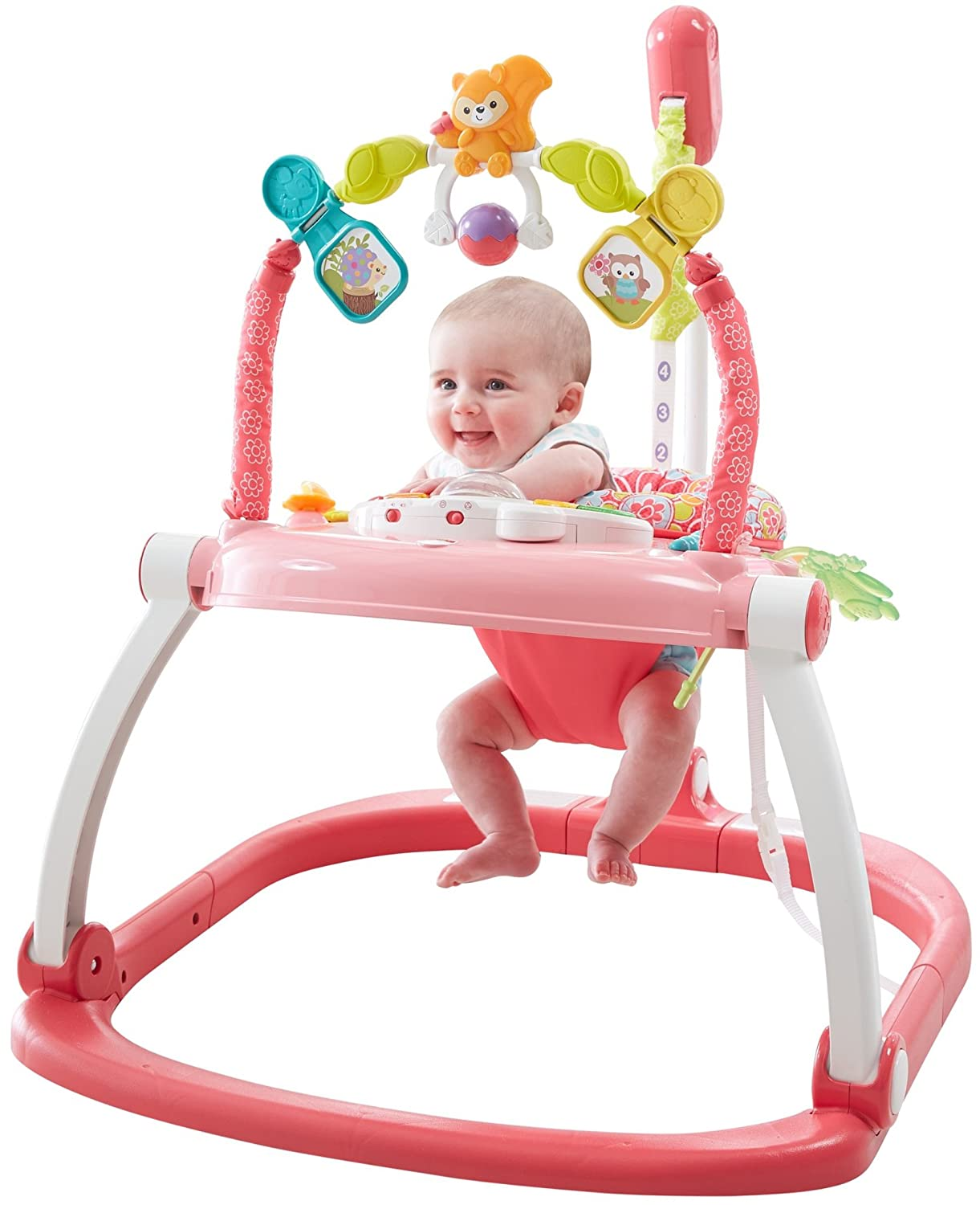 08bf4fe38 Amazon.com   Fisher-Price Floral Confetti SpaceSaver Jumperoo   Baby