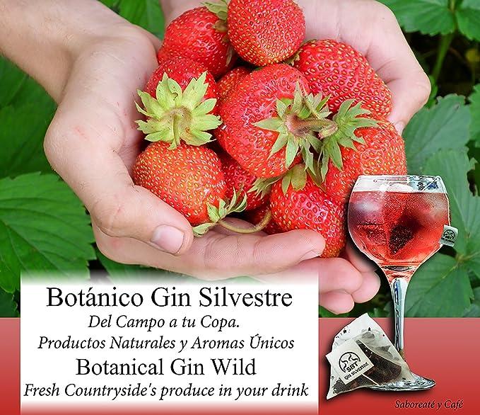 Saboreaté y Café The Flavour Shop Botánicos para Gin Tonic Especias Para Cócteles Ginebra Premium Kit