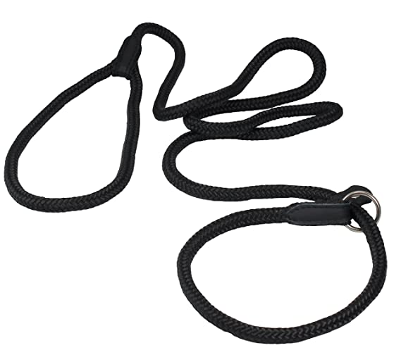 Amazon Com Dogs My Love Nylon Rope Slip Dog Lead Adjustable Collar