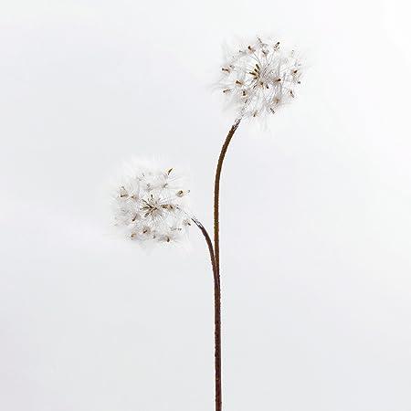 Artplants artificial dandelion theresia 2 white flowers 3385 cm artplants artificial dandelion theresia 2 white flowers 33quot85 cm silk mightylinksfo