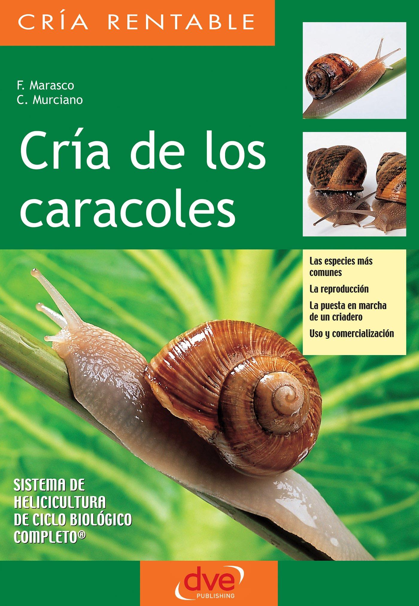 Amazon.com: Parkstone International: Animals