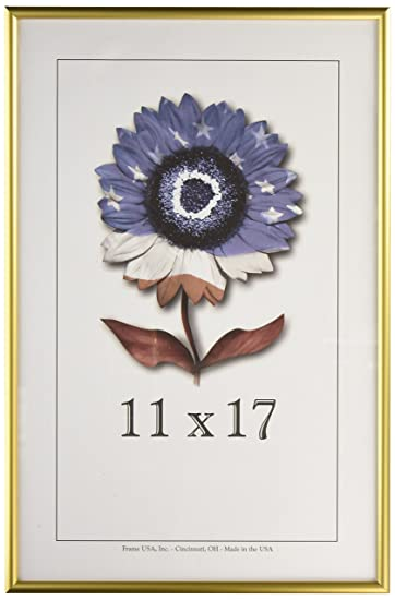 Amazon.com - 11x17 Matte Silver Metal Picture frame - Single Frames