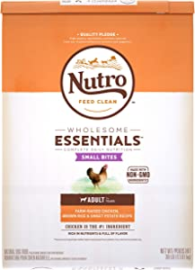 Nutro Wholesome Essentials Small Bites Adult Dry Dog Food, Lamb & Chicken