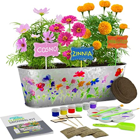 Paint & Plant Flower Growing Kit - Kids Gardening Science Gifts for Girls and Boys Ages 4 5 6 7 8 9 10 11 - STEM Arts & Crafts Project Activity - Grow Your Own Cosmos, Zinnia & Marigold Flowers