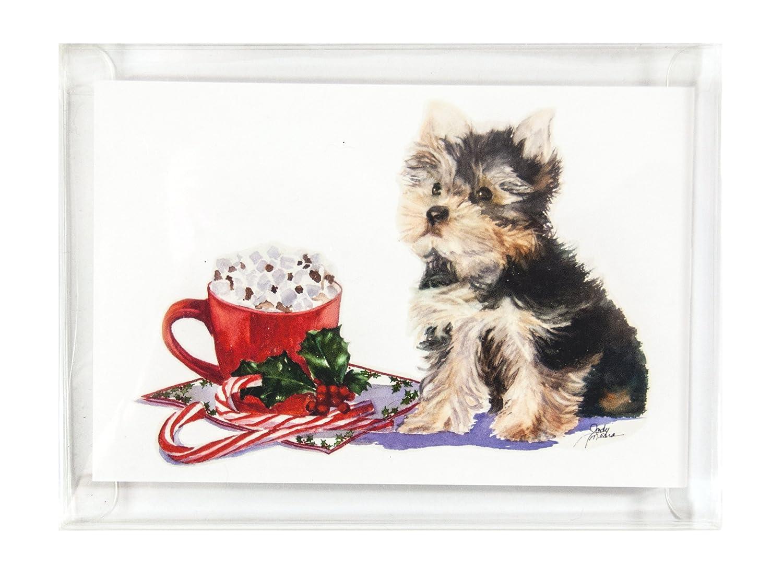 Amazon.com : Rainbow Card Company 10-pack Christmas Cards with ...
