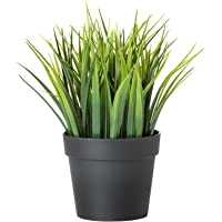 Ikea Artificial Potted Plant, Wheat Grass (Multi-Colour, 7.75 Inch)