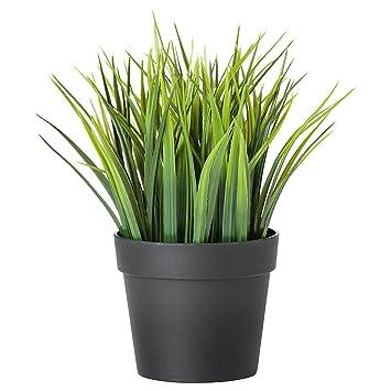 Amazon Com Ikea Artificial Potted Plant Wheat Grass 7 75 Inch