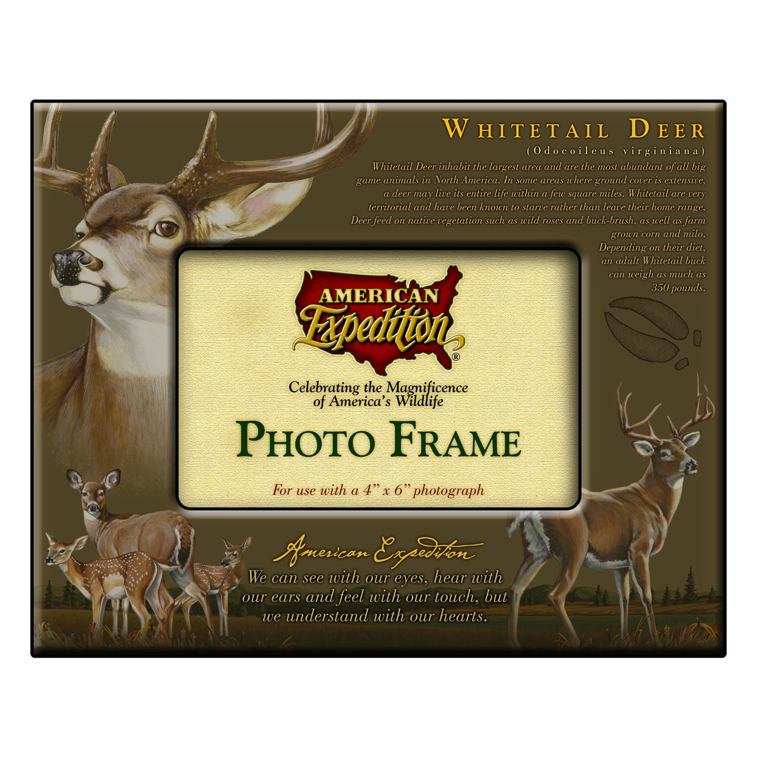 Amazon.com: American Expedition Photo Frame, Whitetail Deer: Sports ...