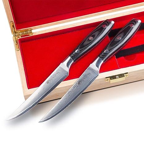 Stallion Cuchillo de Damasco 2 Cuchillos para Carne de Acero damasceno en una Elegante Caja de Regalo - el Regalo Ideal para Hombres y Amantes de un ...
