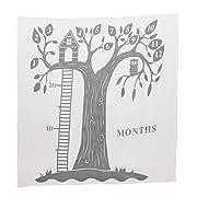 Dejaroo Baby's First Year Milestone Blanket and Felt Circle Set