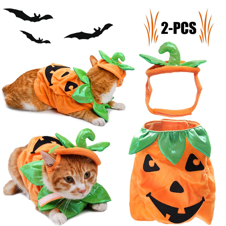Legendog Katzen Halloween Kleidung, Katzen-Kleid-Kürbis-Entwurfs-lustige Haustier-Kleidung Katzen-Halloween-Kostüm mit Kürbis Headwear