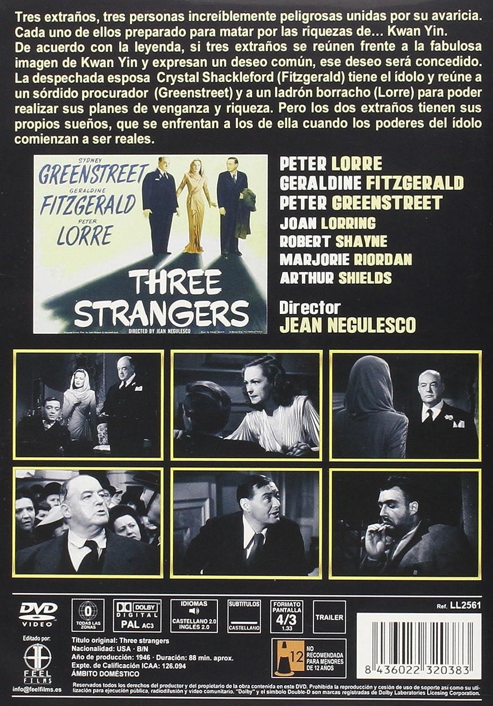 Tres extraños [DVD]: Amazon.es: Sydney Greenstreet, Geraldine Fitzgerald, Peter Lorre, Joan Lorring, Robert Shayne, Marjorie Riordan, Jean Negulesco: Cine y ...