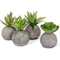 Abbott Collection 27-MOJAVE/10 Succulents in Rocks (Set of 4), Grey