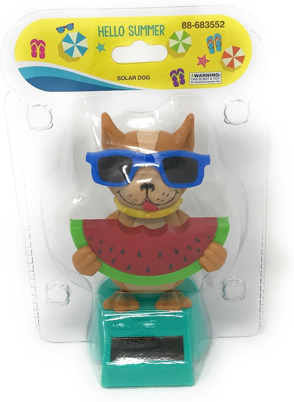 Solar Powered Dancing Cool Dog Bobble Head Holding Watermelon