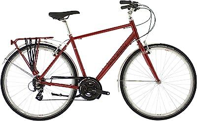 Raleigh Pioneer 2 Street Equipped Hybrid Bike Image