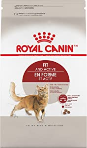 Royal Canin Fit Active Dry Cat Food