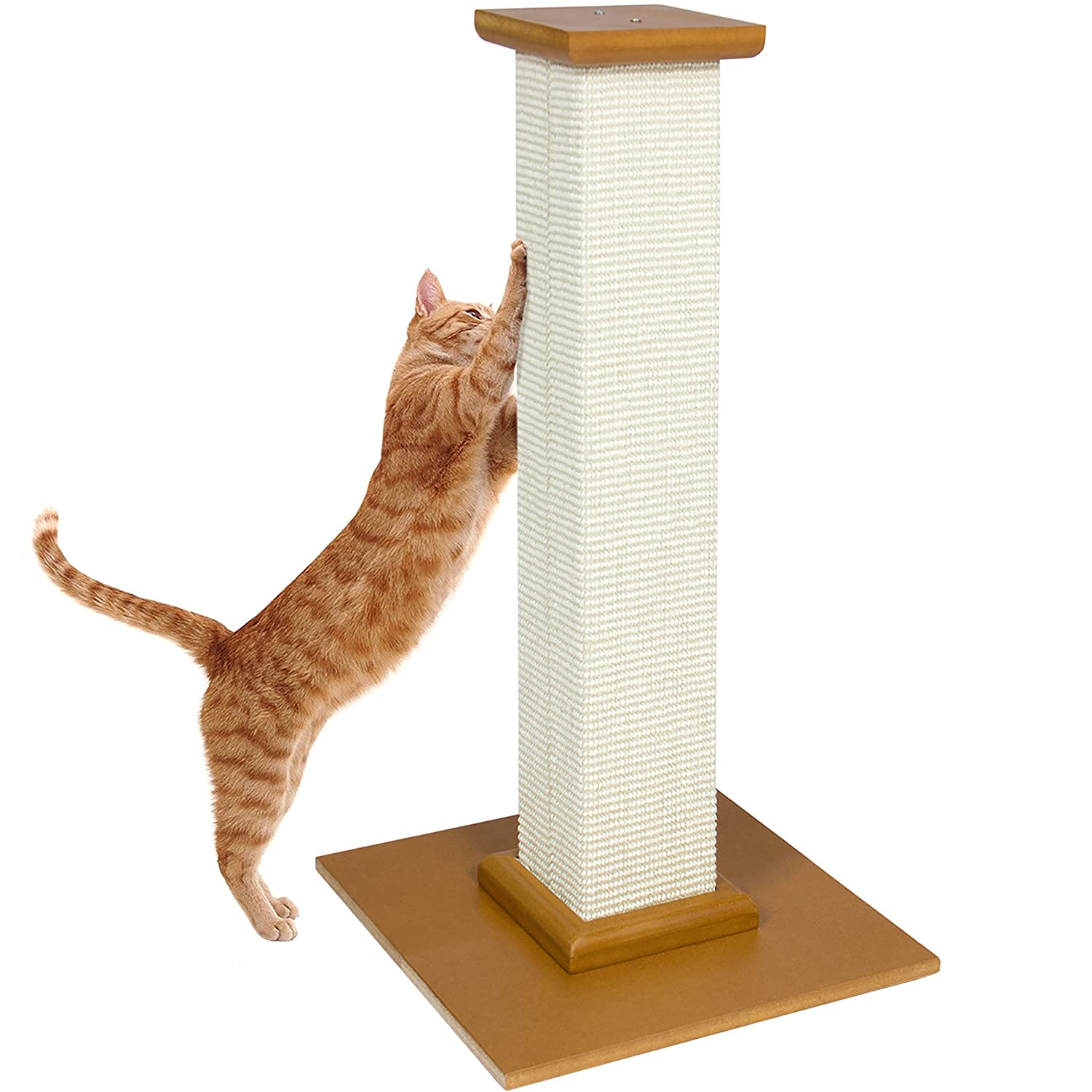 Best Choice Products Cat Tree Scratching Post Pet Scratcher Kitten Kitty Toy