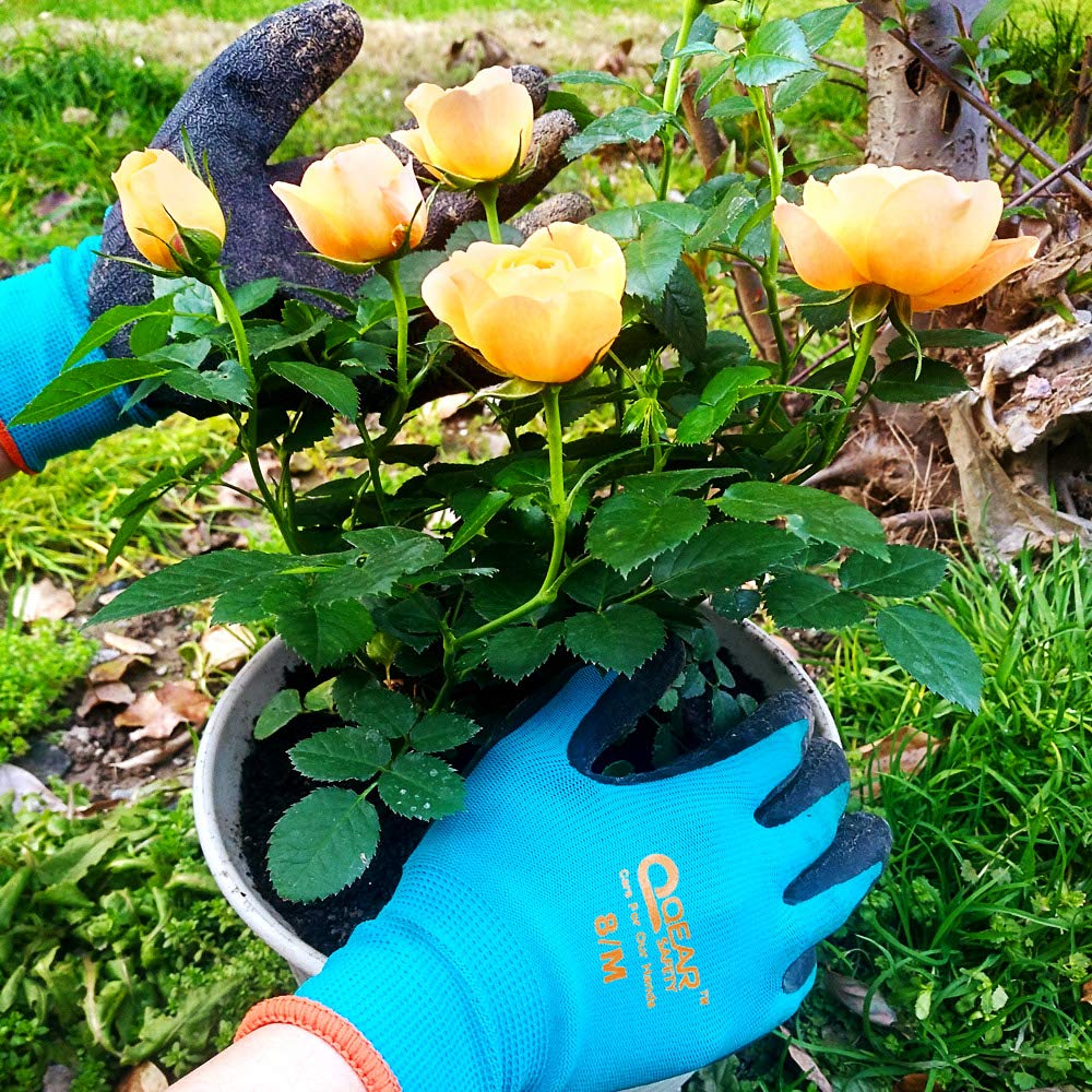 Small abrasion thorn protect grip textured latex palm for dirty 3 pairs pack Garden work gloves