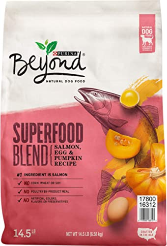 Purina Beyond Natural Adult Dry Dog Food – Superfoods Blend Formula Small Breed Formula