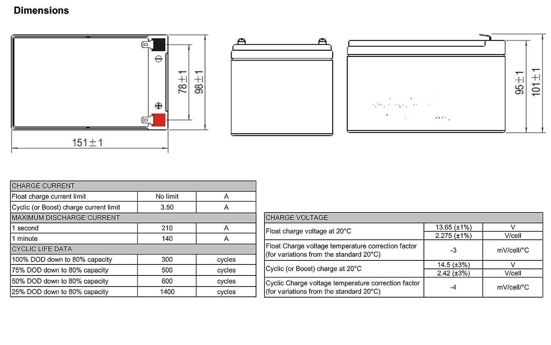 Batería Seadoo GTI VS 12 V 14Ah compatible: Amazon.es: Electrónica