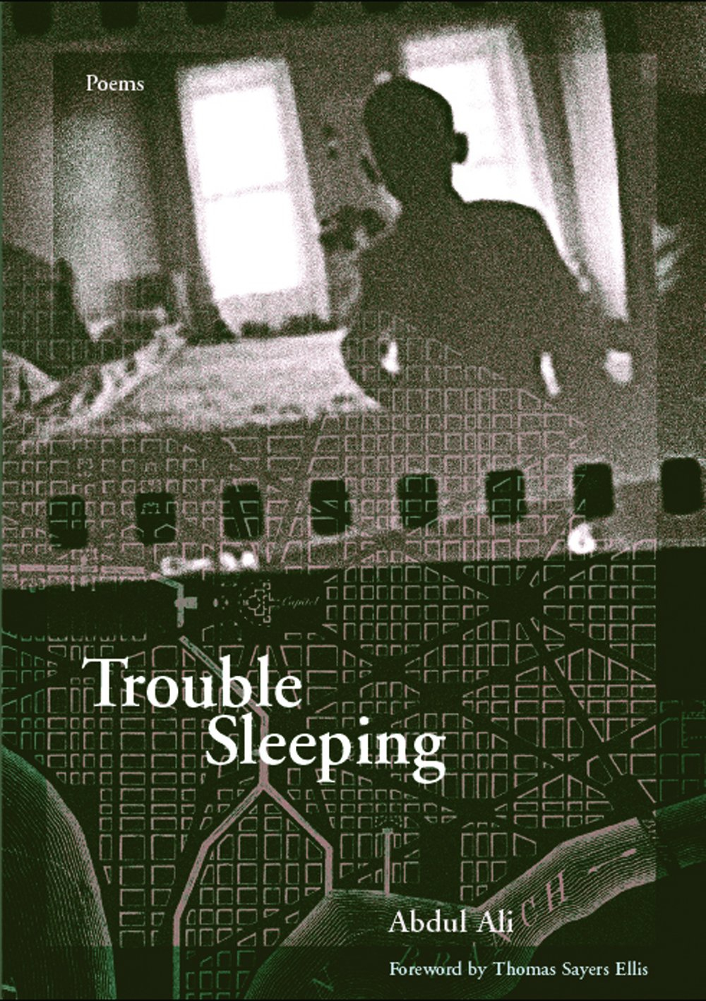 Download Trouble Sleeping (First Book) pdf