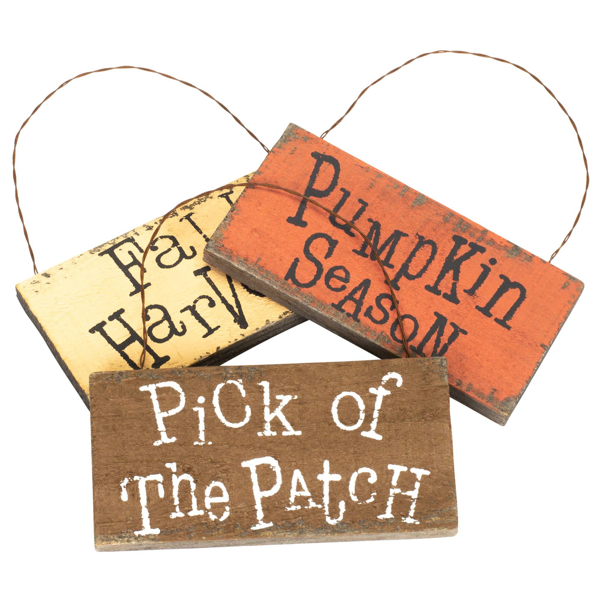 Honey In Me Pumpkin Season Fall Medley 4 x 2 Pallet Wood Harvest Hanging Signs Set of 3