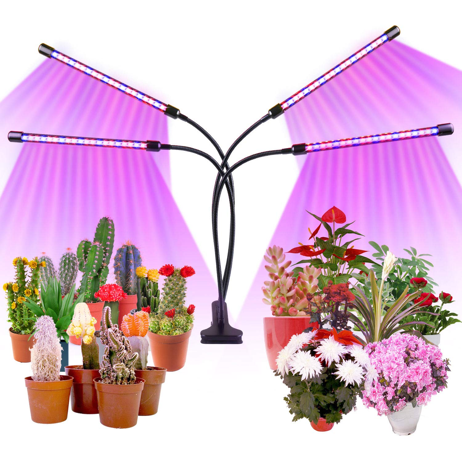 Roleadro Grow Lights for Indoor Plants80W Full Spectrum Plant Lights with Auto