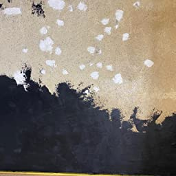 Amazon 簡単 グレーの練り漆喰プレミアム 全4色 ミッドナイトグレー kg 畳10枚分 16 5m2 Prost 練済み漆喰 日本製 左官 塗り壁 漆喰 ペイント 珪藻土 漆喰