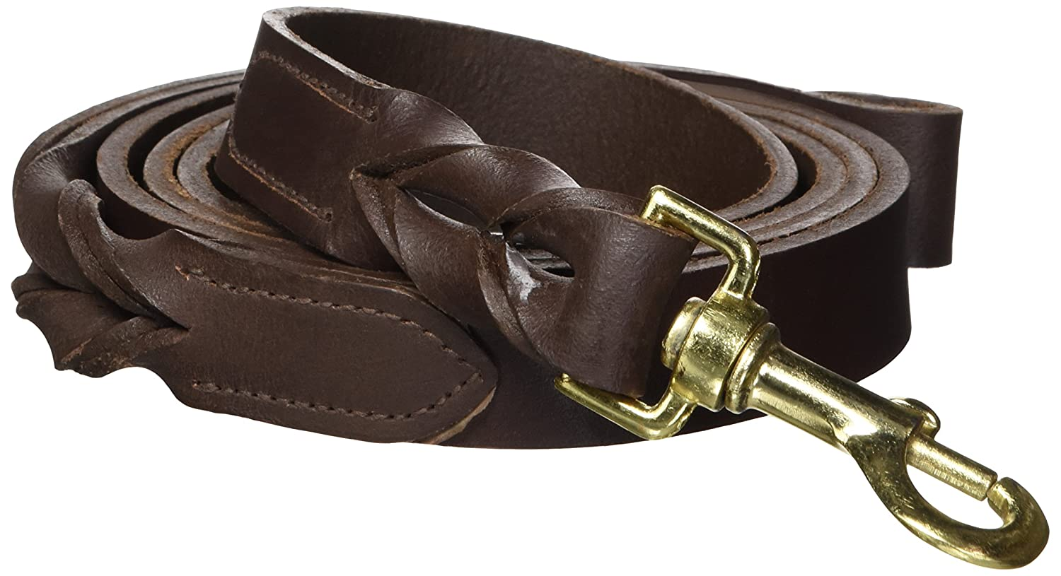 1-Inch Casual Canine Flat Leather Braided Ends Dog Lead, 1-Inch, Brown