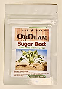Sugar Beet Food Plot Seeds Bulk Excellent Deer Food Plot by OrOlam