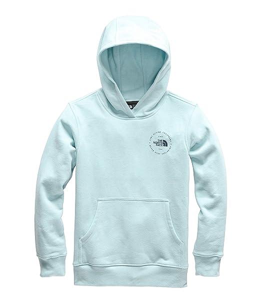 3b2c916a887 The North Face Kids Boy's Logowear Pullover Hoodie (Little Kids/Big Kids)
