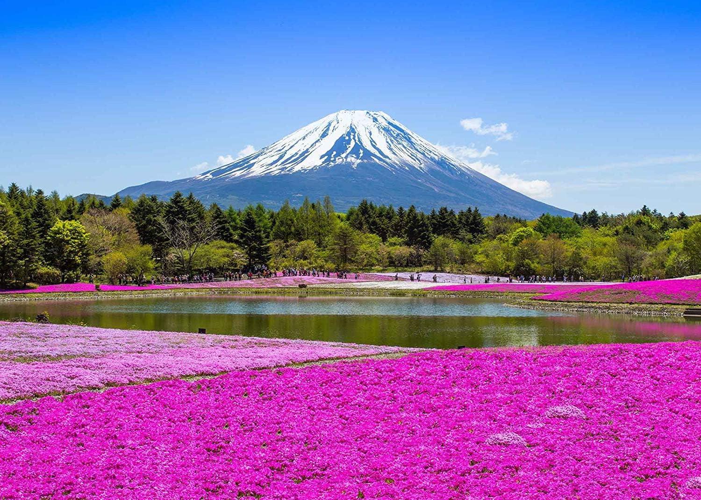 SZZWY 7x5ft Mount Fuji Backdrop Fujiyama Cherry Tree Festival Photography Backdrop Photo Studio Background Props LYGY082