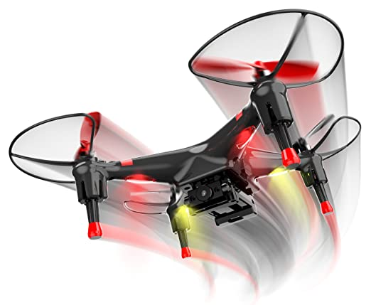 drone qimmiq birdy