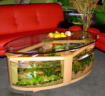 Amazoncom Oval Coffee Table Aquarium with filter pump light