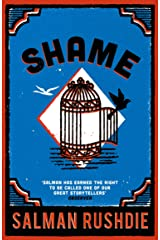 Shame Kindle Edition
