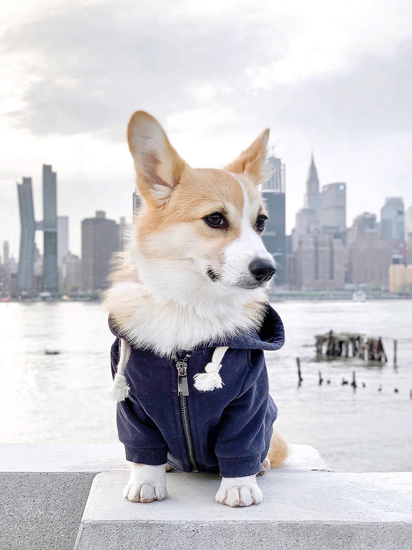 Ellie Dog Wear Adventure Zip Up Dog Hoodie Navy Blue with Hook /& Loop Pockets and Adjustable Drawstring Hood Comfortable /& Versatile Premium Dog Hoodies Size XXS to XL