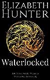 Waterlocked: An Elemental World Wedding Story