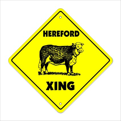 hereford crossing sign zone xing indoor outdoor 12 tall cow