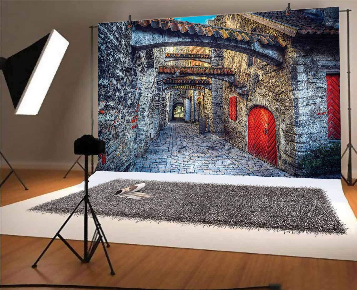 Medieval 8x6 FT Vinyl Photo Backdrops,Old Stone Street with Stone Passage Estonia Medieval Town Heritage Photo Art Background for Selfie Birthday Party Pictures Photo Booth Shoot