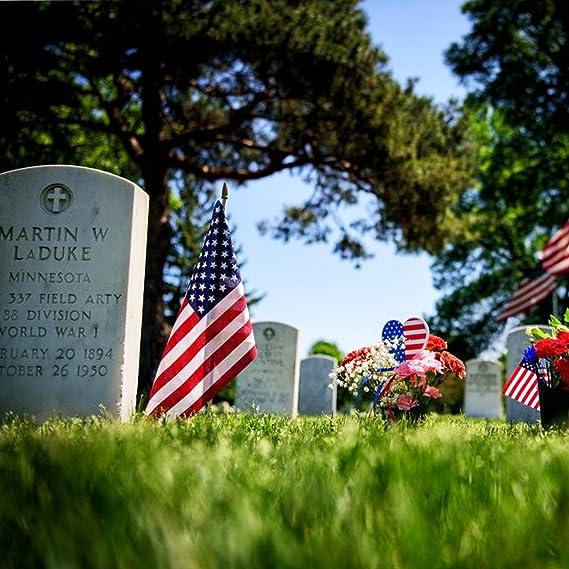 Bandera De Estados Unidos USA Patriotico Con Asta Ajustable De 20 Pies De Altura