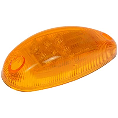 Dorman 888-5240 Turn Signal and Side Marker Light for Select International Models: Automotive