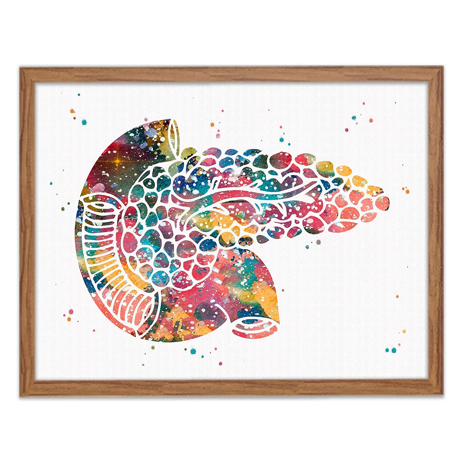 Pancreas Watercolor Print Human Internal Organs Wall Art Digestive System Wall Decor Human Anatomy Office Decor Endocrine Art Works Great Gift for Doctors