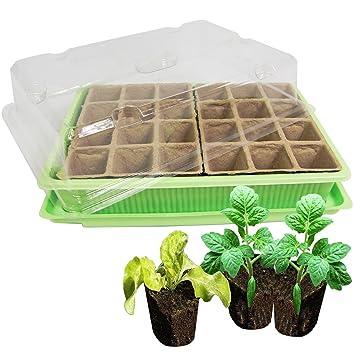 Mini Gewächshaus Zimmergewächshaus 24 Pflanztöpfen Anzuchtschale  Anzuchttöpfe
