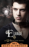 Elvage: A Fantasy Adventure Based in Scandinavian Folklore (Undraland Book 4)