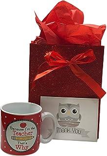 Amazon ghirardelli valentines day owl teacher gift 372oz easter gift for daycare preschool or kindergarten teacher funny teacher coffee mug teacher negle Image collections