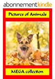 Pictures of Animals: pictures book (English Edition)